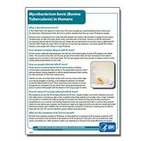 Mycobacterium bovis (Bovine Tuberculosis) in Humans